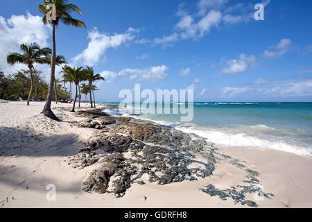 Cristal bleu de la mer et de palmiers sur la plage Playa Guardalavaca, Holguin, Cuba Province Banque D'Images