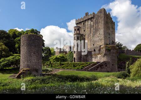 Le château de Blarney est une forteresse médiévale à Blarney, près de Cork, en Irlande. Banque D'Images