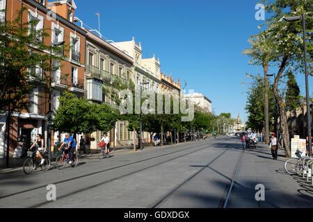 Soirée dans la Calle San Fernando, Séville, Espagne. Banque D'Images