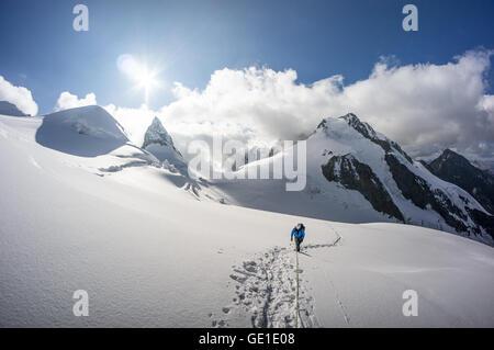 Randonnée alpinisme sur un glacier dans les Alpes suisses, le Piz Bernina, Suisse Banque D'Images