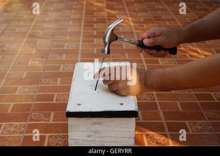 Carpenter supprimera l'ongle avec un marteau sur le bois blanc