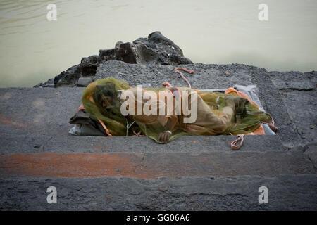 Rishikesh, Uttarakhand, Inde. 17 mai, 2013. L'image de fichier - UN Sadhu couverts d'une moustiquaire repose au Banque D'Images