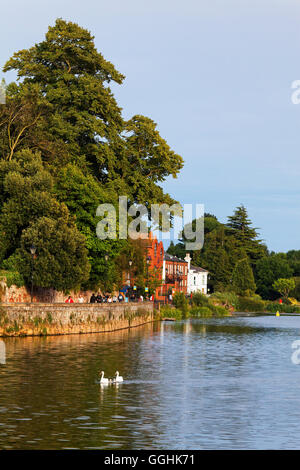 Quay le long de la rivière Exe, Exeter, Devon, Angleterre, Grande-Bretagne