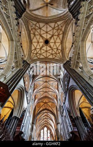 Vault, la cathédrale de Salisbury, Salisbury, Wiltshire, Angleterre, Grande-Bretagne Banque D'Images