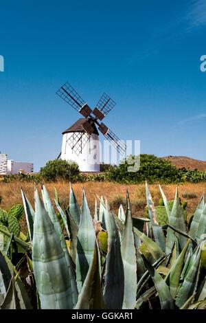 Moulin, musée Centro de Interpretacion de los Molinas, Antigua, Fuerteventura, Îles Canaries, Espagne Banque D'Images