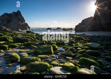Les piles de la mer et à la plage de rochers Bedruthan Steps le long de la côte de Cornouailles, Angleterre Banque D'Images