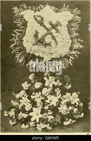 La fleuriste américain - un journal hebdomadaire pour le commerce extérieur (1904) Banque D'Images
