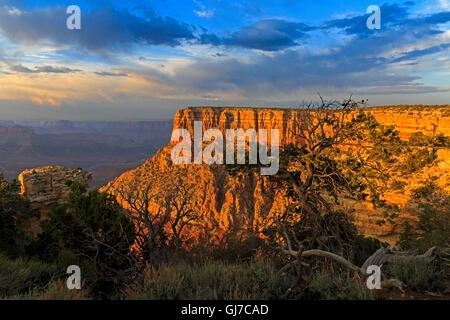 Une impressionnante butte de red rock à partir du côté est de Moran Point dans le Parc National du Grand Canyon, Banque D'Images
