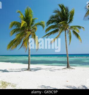 Cuba voyage nature Banque D'Images
