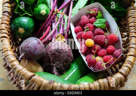 Panier avec produits du jardin fraîchement cueillies Banque D'Images