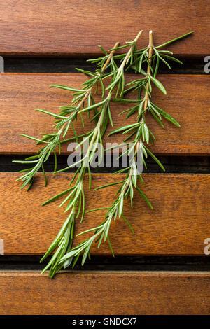 Branche de romarin vert sur la table en bois. Banque D'Images