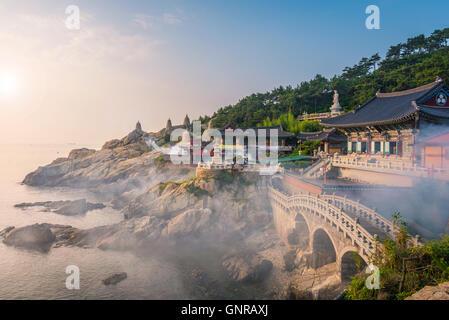 Haedong Yonggungsa Temple à Busan, Corée du Sud. Banque D'Images