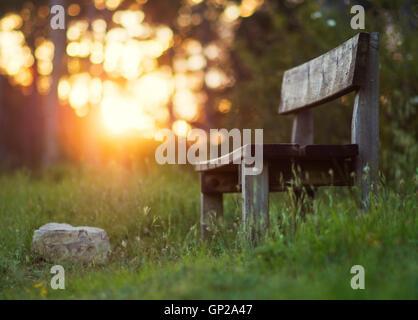 Image d'un seul banc de bois dans une forêt illuminée par la lumière du coucher de soleil en arrière-plan. Banque D'Images