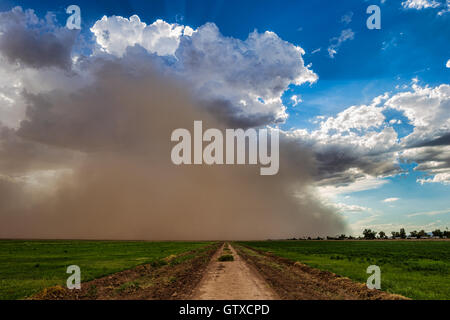 Tempête de poussière de la mousson approche de Phoenix, Arizona