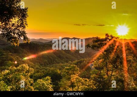 Vue panoramique du parc national des Great Smoky Mountains en été Banque D'Images