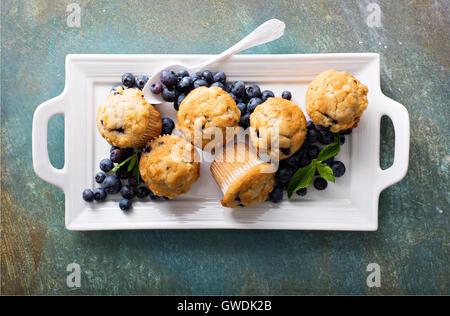Muffins aux bleuets sur une plaque Banque D'Images