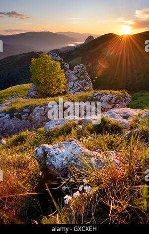 Paysage avec des pierres sur le coucher du soleil, Bolshoy Thach (Big Thach) Nature Parc, Montagnes du Caucase, République de Adygea, Russie