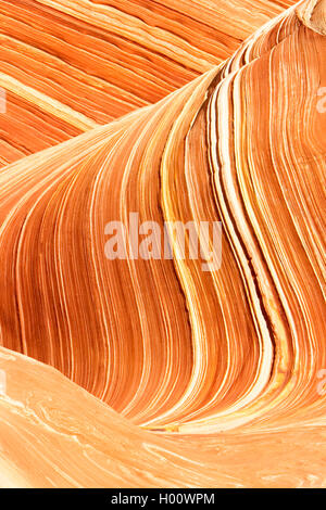 Formations de grès à Vermilion Cliffs National Monument, Arizona, USA, Vermilion Cliffs National Monument Banque D'Images