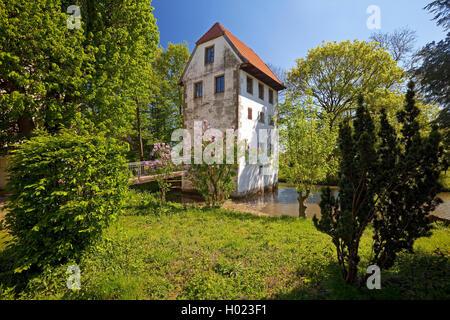 Cour Bispinghof avec fossé et le grenier, l'Allemagne, en Rhénanie du Nord-Westphalie, région de Münster, Nordwalde Banque D'Images