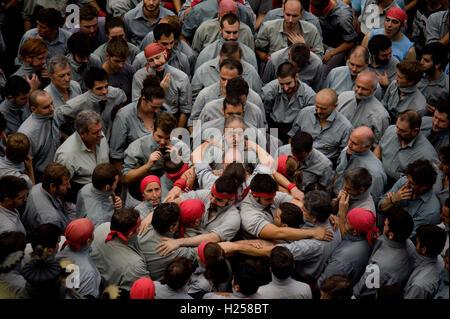 Barcelone, Catalogne, Espagne. Sep 24, 2016. Castellers se préparent à construire une tour humaine pendant la Jornada Castellera ou 'tours humaines Day' au cours de la Merce Festival. Crédit: Jordi Boixareu/ZUMA/Alamy Fil Live News