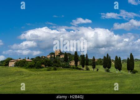 Paysage typique de la Toscane en Val d'Orcia, avec des collines et des cyprès, Pienca, Toscane, Italie Banque D'Images