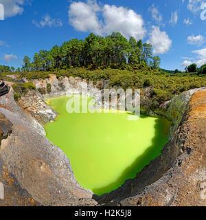 Baignoire du diable lac thermal, vert lumineux, Wai-O-Tapu zone thermale, Waiotapu, Rotoua, de la région de Waikato, Banque D'Images