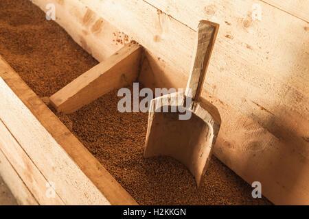 Scoop en bois dans une boîte de céréales, de l'équipement vintage moulin Banque D'Images