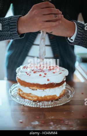 Femme avec un beau gâteau cuit au four. Banque D'Images