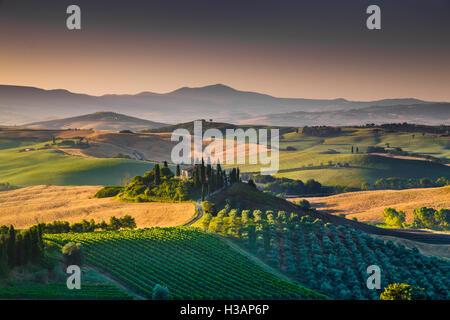 Le paysage pittoresque de la Toscane avec ses collines et vallées dans la lumière du matin d'or, Val d'Orcia, Italie Banque D'Images