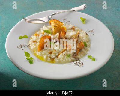Wiild chanterelle ou girolle organiques Champignons (Cantharellus cibarius) ou sautés dans le beurre et les herbes Banque D'Images