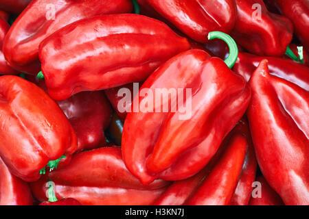 Pile de poivrons rouges, poivrons doux de type connu sous le nom de l'oreille des éléphants Banque D'Images