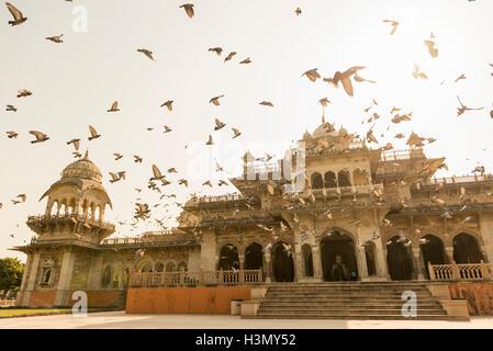 Albert Hall, Jaipur, Rajasthan, Inde Banque D'Images