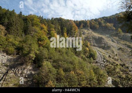 Jenbachtal, automne, inclinaison glisse, bois de l'Automne, couleurs, autumnally, inclinaison, glissement de terrain, érosion, roche, arbres, marche à pied, le tourisme, la Bavière, l'omble de Jen,