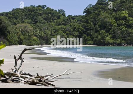 Mer, la plage, Puntarenas, Costa Rica, parc national Manuel Antonio, Banque D'Images
