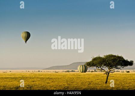 L'Afrique, Tanzanie, Afrique de l'Est, le parc national de Serengeti,, ballon, montgolfière, montgolfière, Banque D'Images