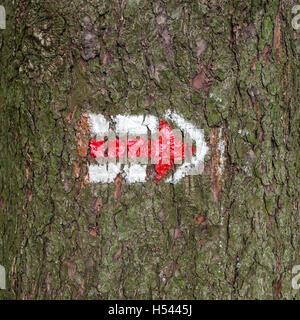 Tourisme tchèque signe sur tronc d'arbre écorce bois, randonnées Banque D'Images