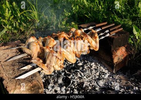 Ailes de poulet savoureux frits sur charbons dans l'air frais Banque D'Images