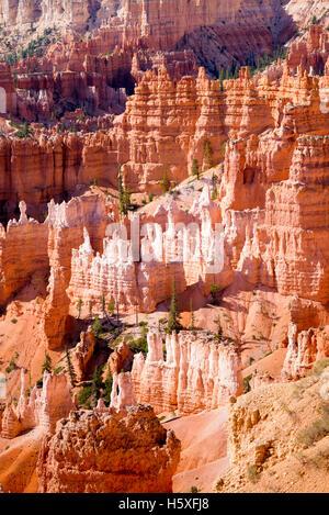 La vue magnifique, le Parc National de Bryce Canyon, Utah, situé dans le sud-ouest des États-Unis. Banque D'Images