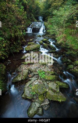 Watersmeet près de Lynmouth, North Devon Banque D'Images