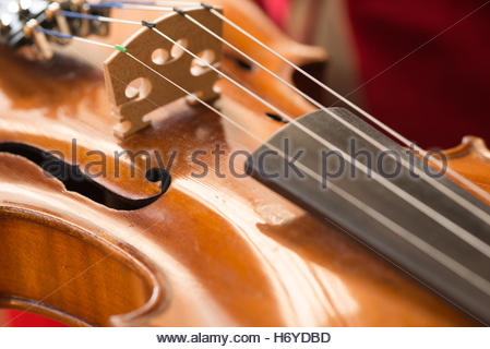Close up des cordes et pont d'un violon. Banque D'Images