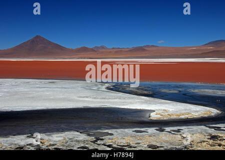 La belle couleur rouge de la Laguna Colorada dans le sud de la Bolivie, de l'Amérique du Sud Banque D'Images