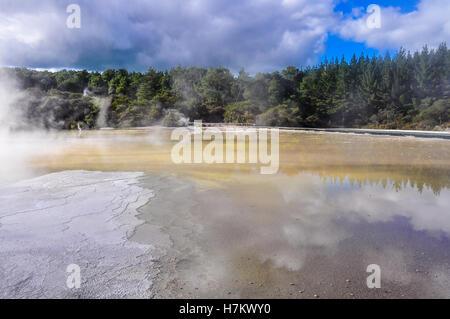 Étang de l'eau dans le pays des merveilles de la Wai-o-tapu, zone géothermique près de Rotorua, Nouvelle-Zélande Banque D'Images