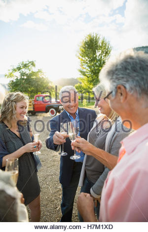Friends toasting with champagne in sunny vineyard Banque D'Images