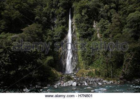 Thunder Creek Falls, rivière haast, mount aspiring national park, South Island, New Zealand Banque D'Images