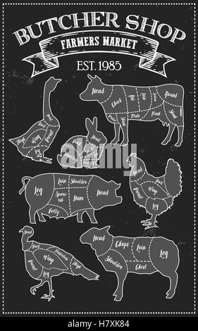 Couper la viande en régime de coupe guide schéma de style vintage. L'élément graphique illustration de craie pour menu, bannière. Steak de porc vache chick