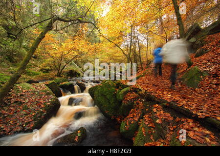 Les randonneurs sur un sentier public par Wyming Brook dans le parc national de Peak District, Sheffield, South Banque D'Images