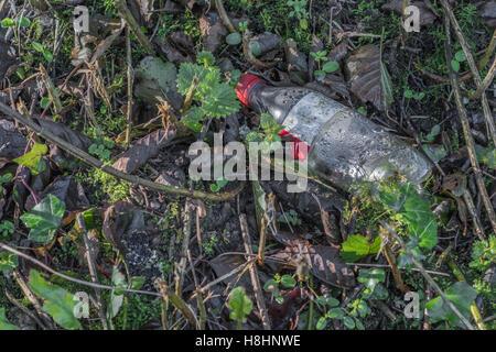 Bouteille de boisson jetées vu dans un pays haie. Les déchets en plastique, les guerre contre le concept de plastique. Métaphore de la pollution de l'environnement, les déchets en plastique.