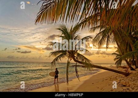 Surfer et coucher du soleil à Dover Beach, St Lawrence Gap, Côte Sud, Barbade, Caraïbes. Banque D'Images