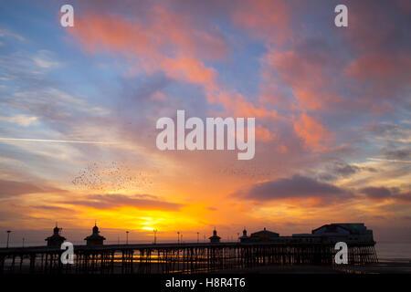 Oiseaux en vol, voler dans les nuages à des bandes d'Étourneaux à Blackpool, Lancashire, Royaume-Uni. Starling murmuration Banque D'Images