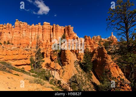 Il s'agit d'une vue sur les majestueuses flèches le long de la red rock Queens Garden Trail de Bryce Canyon National Park, Garfield County, Utah, USA.